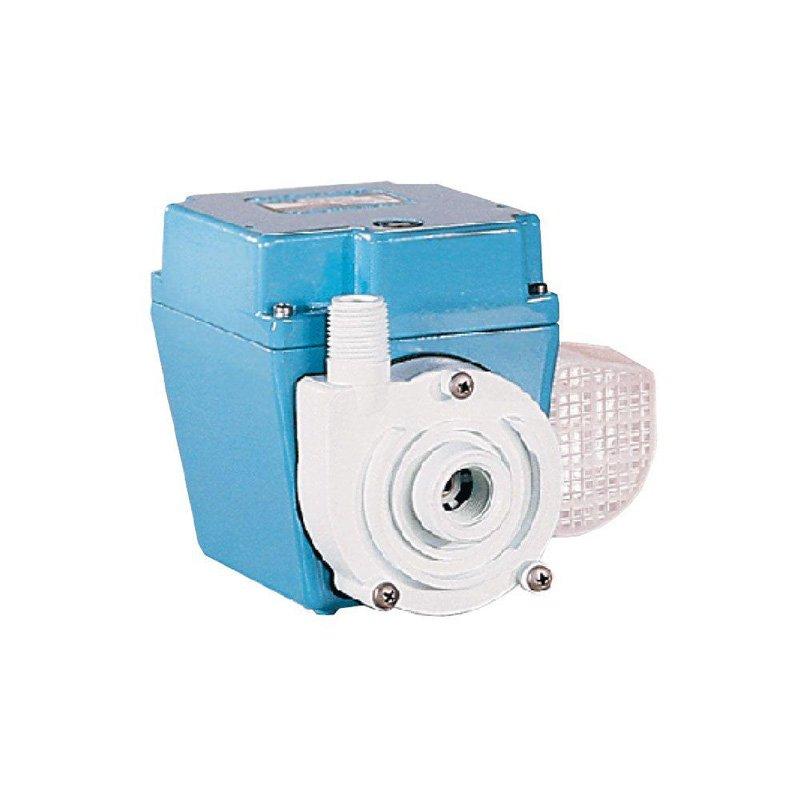 Lilgiant 1366653 Lg 503603 Salon Pump